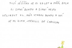 Vanoce-Ladislav